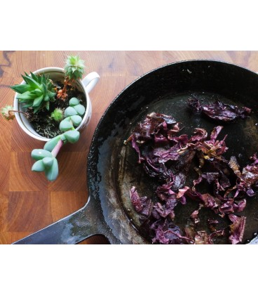 Dulse bites - wild harvested